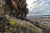 Pemaquid Point Coast