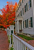 Goodwin Mansion
