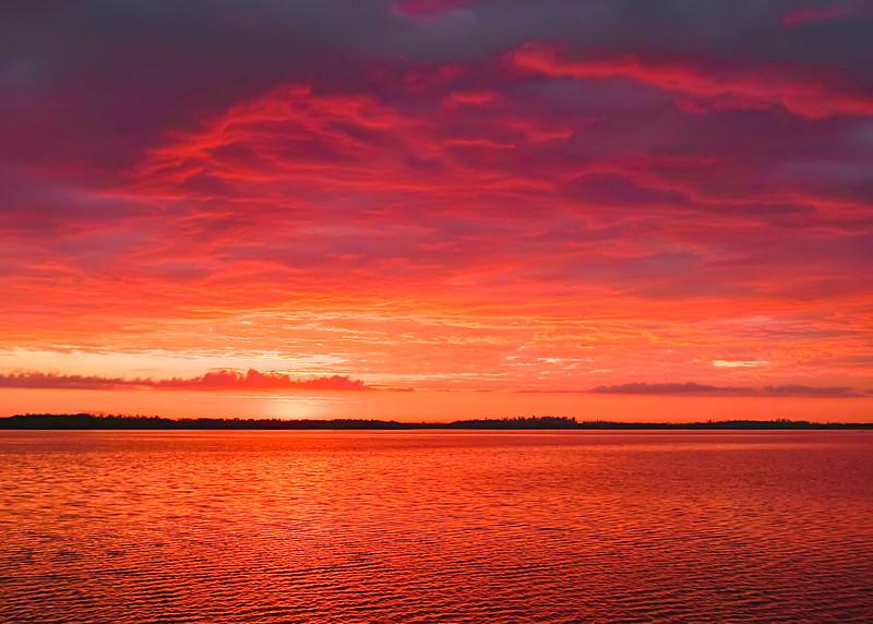 Red Rising Morning (Florida)