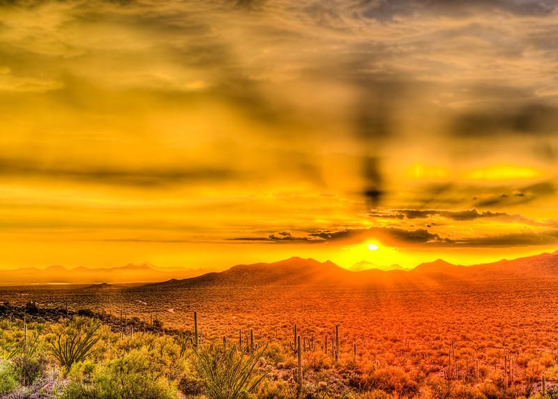 Golden Desert Sunset (Arizona)