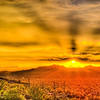 Golden Desert Sunset (Arizona)