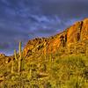 Storm Over Sahuaros (Arizona)