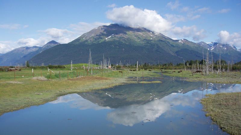 Alaska, 2010