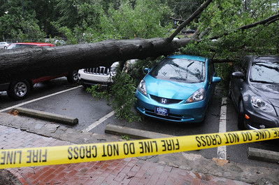 Heavy rains in Chapel Hill on June 30 caused flash flooding. Several trees were downed in the area.