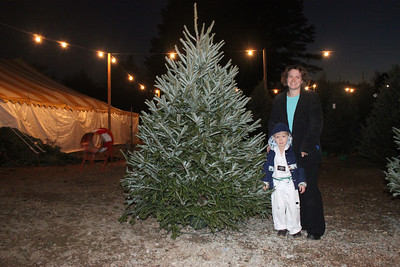 Emily Neel and her four-year-old son Carden found their Christmas tree at Cranberry Tree Farm in Chapel Hill. The duo's pick came from trees that covered the lot, ranging from just shy of four feet tall to a towering ten or so. More await their turn to go on display in a circus-like tent.