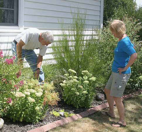 Lucy Starr and George Rumph ready part of their garden for an upcoming fundraiser. Dry, hot conditions have meant extra work to keep the plants looking good.<br /> Mark Newman