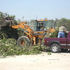 The City opened a property on Gateway Drive as a tree dropoff point. At one point Monday, a citizen vehicle loaded with logs, limbs and branches entered the lot every 30 seconds; one man said he was on his fifth trip. <br /> Mark