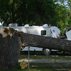 Visitors to Ottumwa Park campgrounds said it was lucky that no one was injured, as several RVs were struck by limbs — or entire trees.