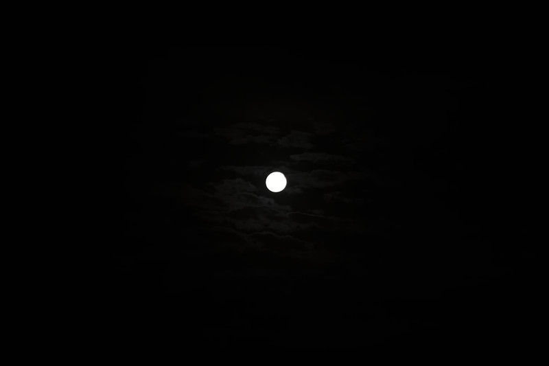 New Year's Moon