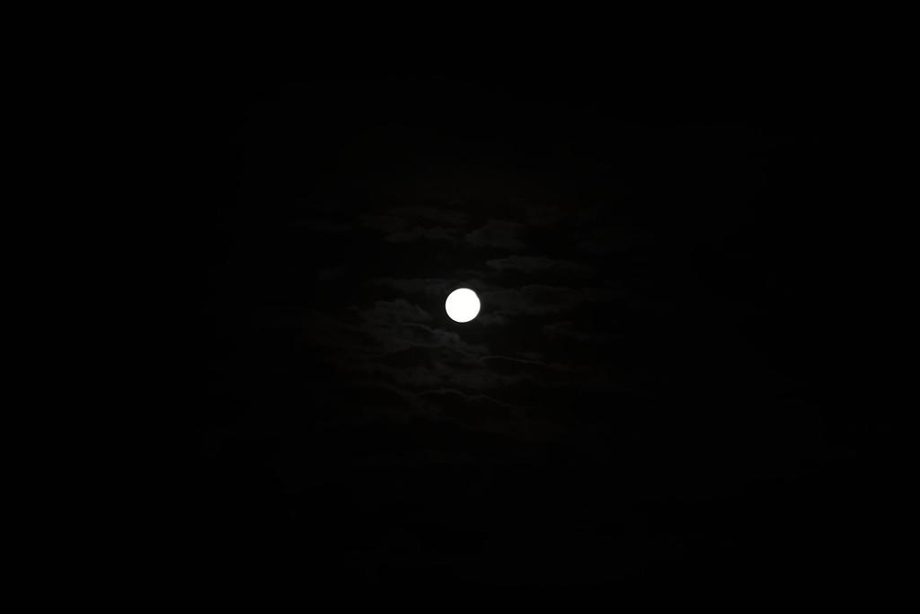 New Year's Moon
