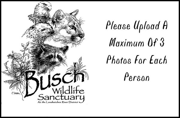 Meetup - Busch Wildlife Sanctuary - January 2018