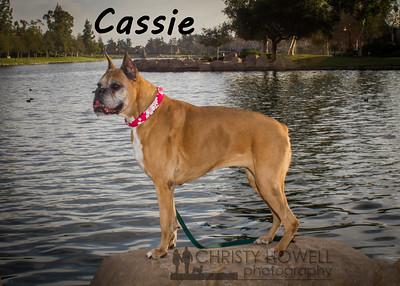 Cassie-2-2wm