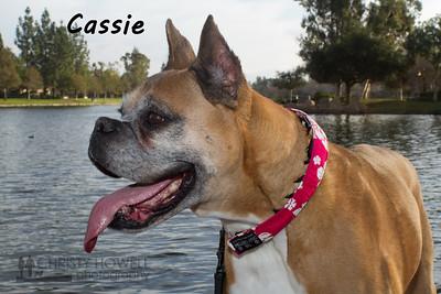 Cassie-1wm