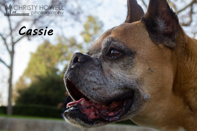 Cassie-9wm