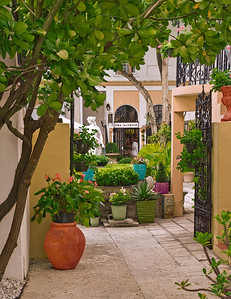 Courtyard Of Greenery 4 of 6 Mike Packman