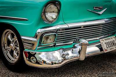 Shiny Bumper      Photography by Wayne Heim