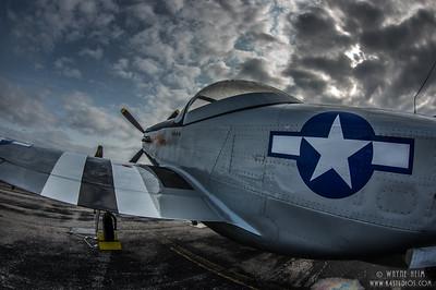 Star on Side   Photography by Wayne Heim