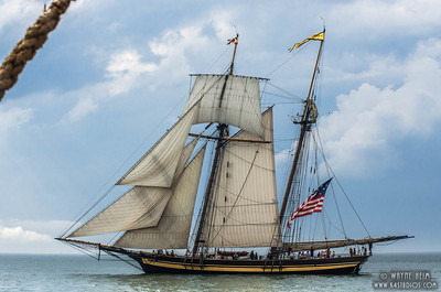 Lynx Under Sail   Photography by Wayne Heim