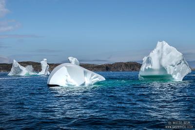 Iceberg 5  Photography by Wayne Heim