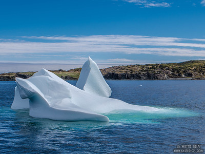 Iceberg 15   Photography by Wayne Heim