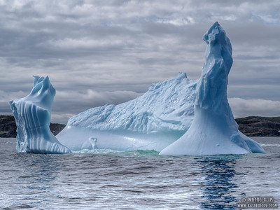 Iceberg   27   Photography by Wayne Heim