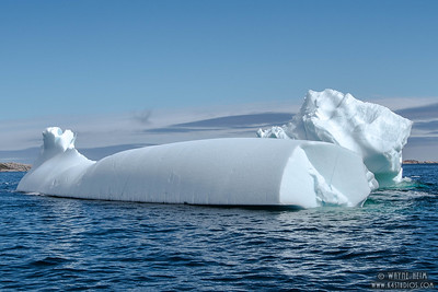Iceberg 4     Photography by Wayne Heim