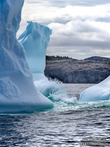 Icebergs 24    Photography by Wayne Heim