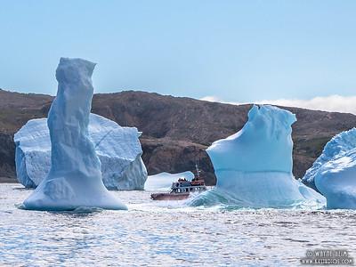 Close to Icebergs   Photography by Wayne Heim