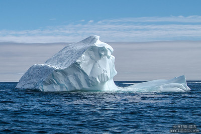 Iceberg 3   Photography by Wayne Heim