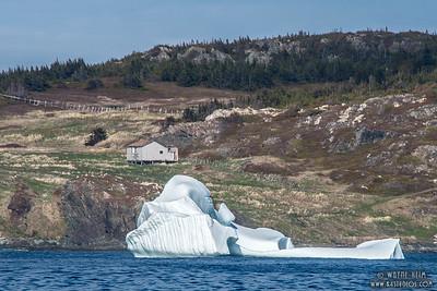 Inlet Iceberg     Photography by Wayne Heim