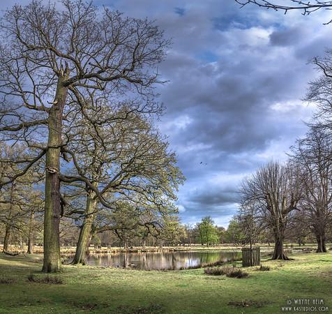 Manchester  Pond    Photography by Wayne Heim