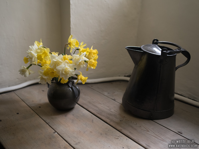 Flowers in Still Life     Photography by Wayne Heim