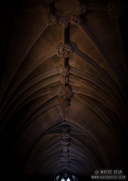 Knots     Photography by Wayne Heim