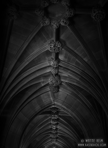 Knots in Black & White     Photography by Wayne Heim