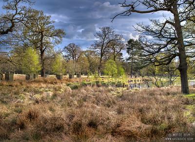 Manchester Pasture    Photography by Wayne Heim