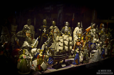 Knights in Window    Photography by Wayneheim