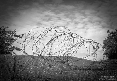 Barbed Wire on Normandy Beach    Black and White Photography by Wayne Heim