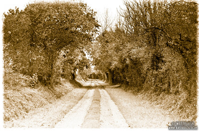 Long Road in Normandy 3   Photography by Wayne Heim
