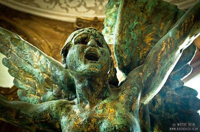 Angel Shouts     Photography by Wayne Heim