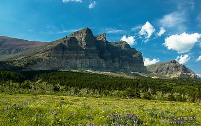 Spring Meadow    Photography by Wayne Heim