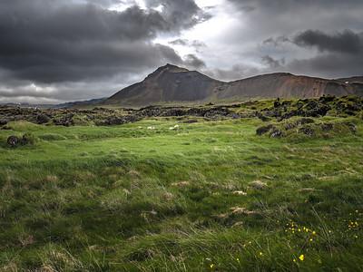 Wind Swept   Photography by Wayne Heim