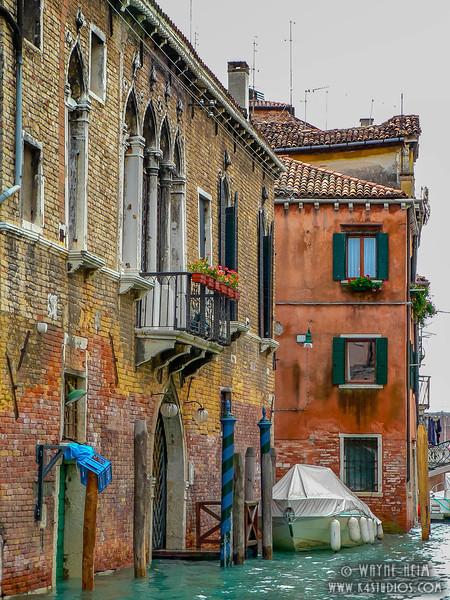 Venice Flowers Photography by Wayne Heim