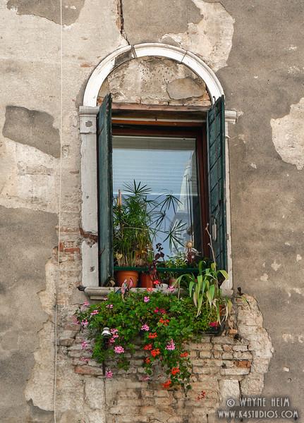 Floral Window       Photography by Wayne Heim