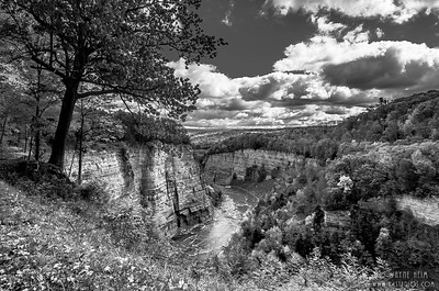View of Letchworth Canyon   Black & White Photography by Wayne Heim