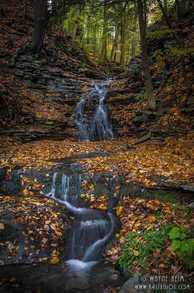 Little Stream    Photography by Wayne Heim