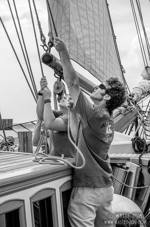 Hoisting the Sail    Photography by Wayne Heim