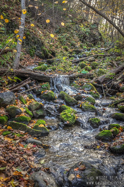 Fall Stream  (Verticle)   Photography by Wayne Heim