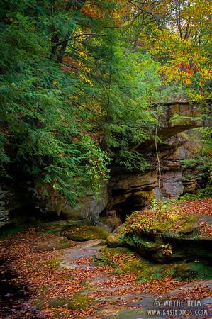 Quiet path   Photography by Wayne Heim