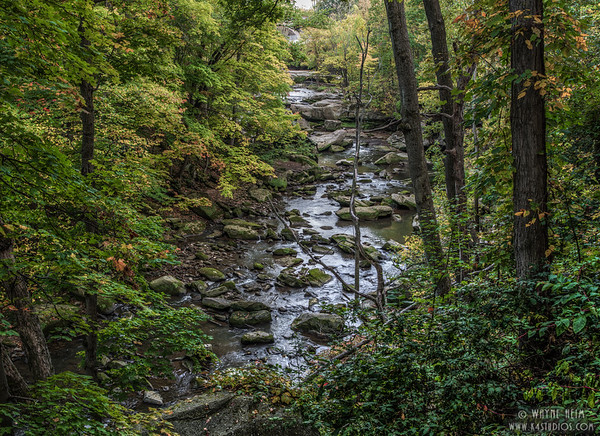 Berea Stream  Photography by Wayne Heim