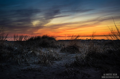 Night on the Beach   Photography by Wayne Heim